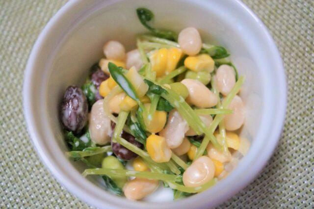 豆苗と豆のサラダ